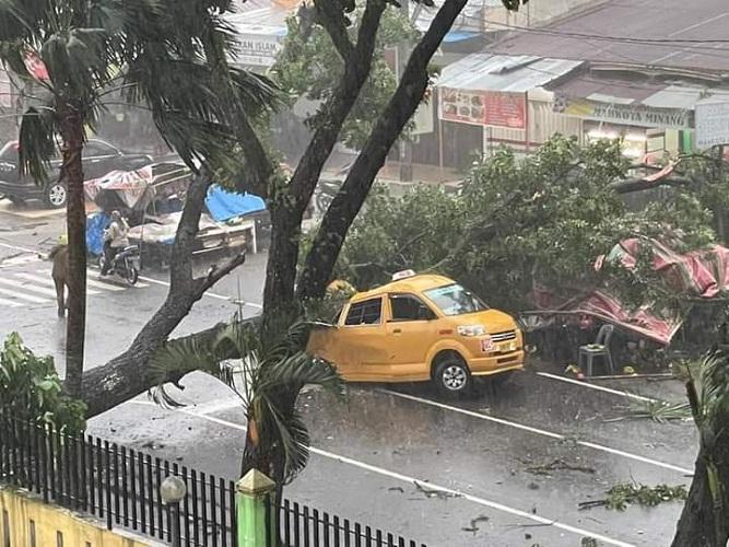 Pohon Tumbang di Wilayah RS. Adam Malik Medan, Menyebabkan Korban Jiwa